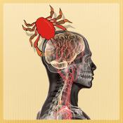 Adrenal Cancer Symptoms